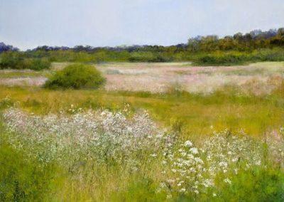 Jannene Behl_Carmel Wildflowers