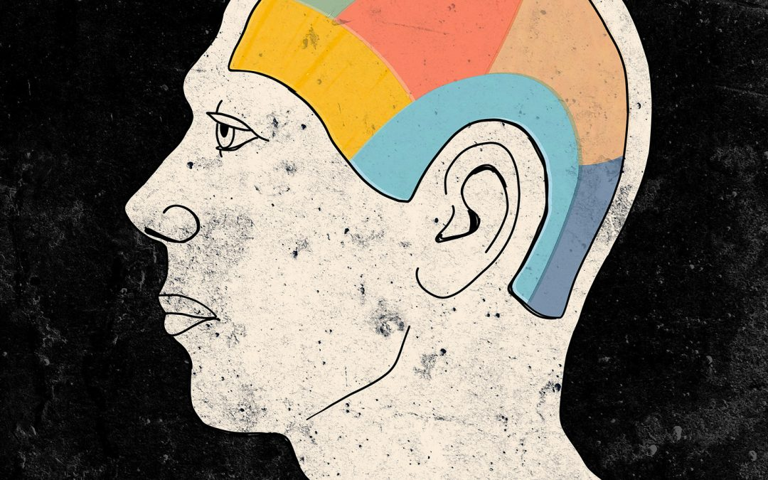 Talking Head: Math Brain