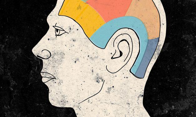 Talking Head: Math Brain