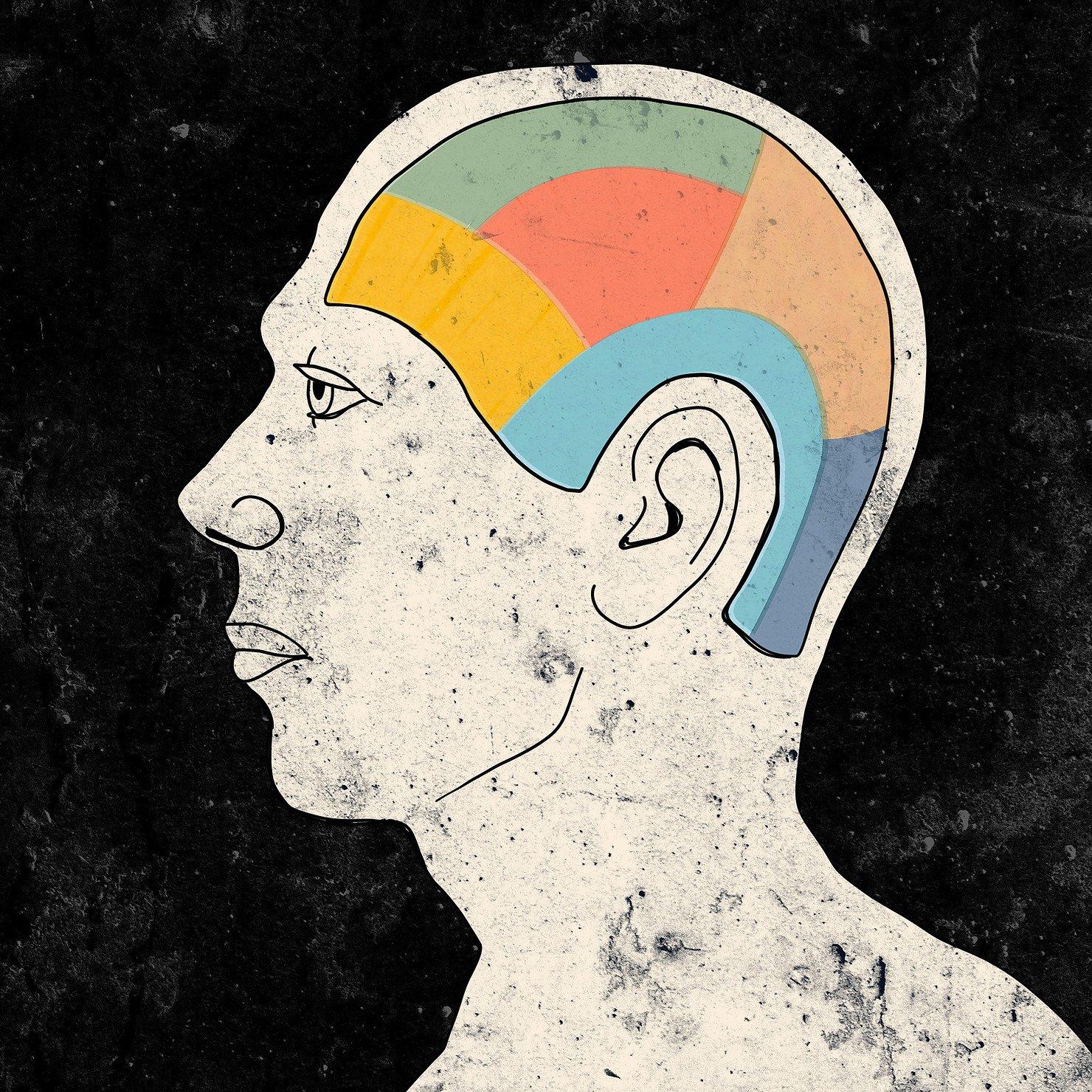 Talking Head Math Brain Jules Weissman
