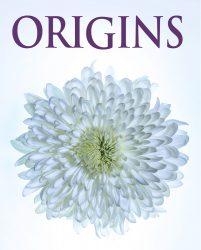 """Ojai Studio Artists """"Origins"""" Exhibit"""