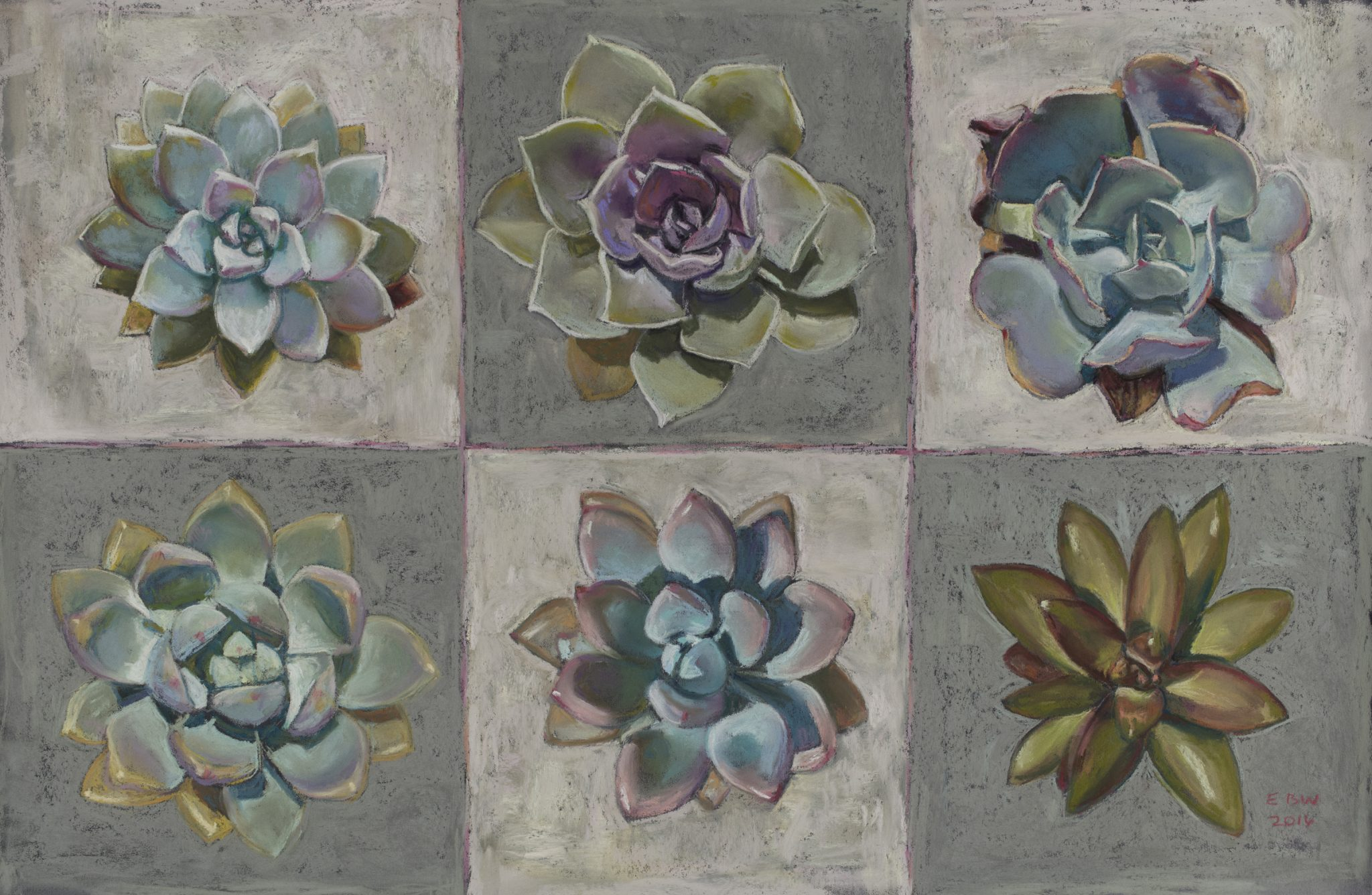 Elizabeth White_Three-by-Two-Succulents, pastel