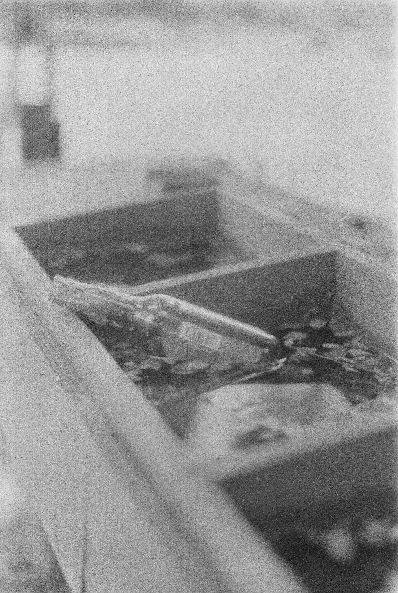Lonesome by Artemisia Polina Grasso