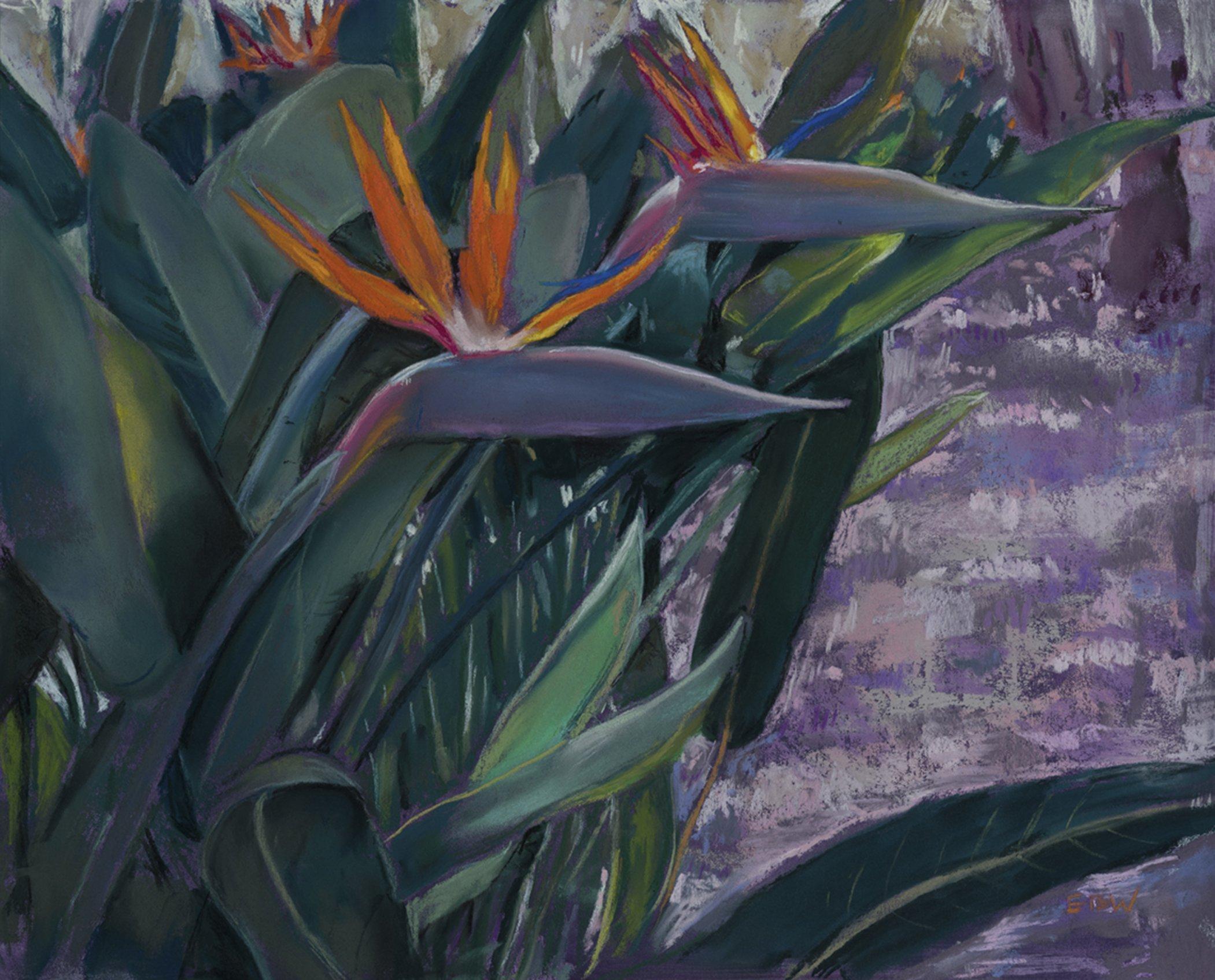 Paradise Elizabeth White